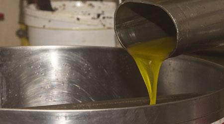 Clarification de l'huile d'olive